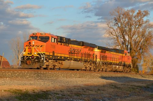 Fall Trains